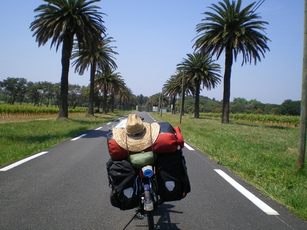 11.05.2007 - Route du Cap de Léoube.