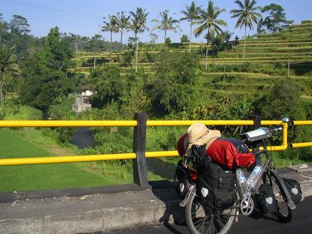28.11.2006 - Terrasses de riz entre Muncan et Selat. Bali.