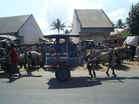 "01.12.2006 - Les ""cidomo"" de Lombok."
