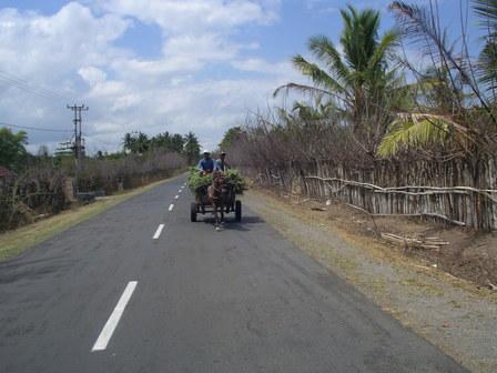 02.12.2006 - Deux gaillards tentent de tenir mon allure. Sumbawa.