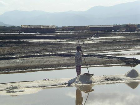 08.12.2006 - Marais salants en direction de Bima. Sumbawa.