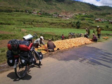 07.03.2007 - Récolte de carottes. Direction Antsirabe.